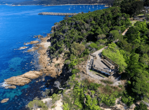 Eden Whale Watching Lookout