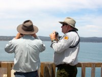 WATCH WHALES WITH THE EXPERTS