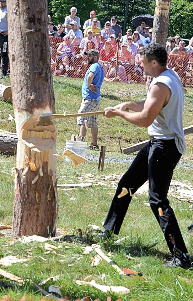 Timber sculpting by the country's best!